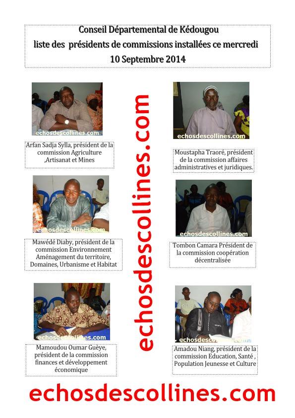 conseil départemental de Kédougou