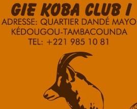 Présentation du GIE Koba-Club1 leader dans la transformation du fonio dans la région de Kédougou