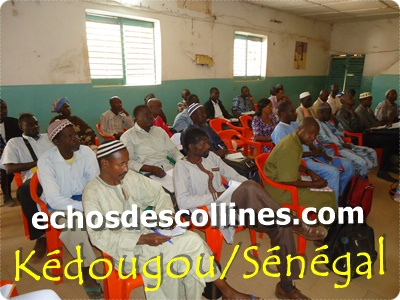Kédougou : Education, la COSYDEP prône une école de la réussite