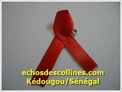 Kédougou: Une mission du CNLS passe en revue les conventions signées