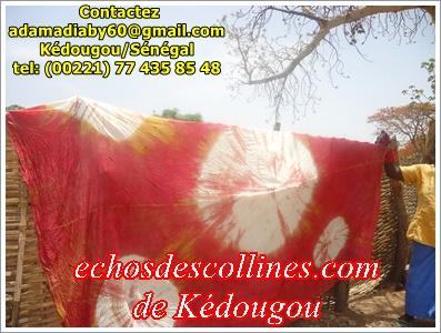 Kédougou: Des produits de Dindéfélo seront vendus en Europe