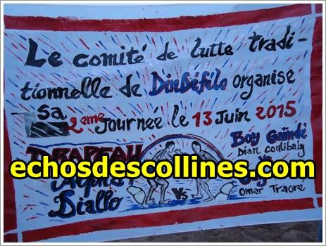 Dindéfélo: Lutte, Omar Traoré, transporteur s'adjuge du drapeau Alpha Diallo