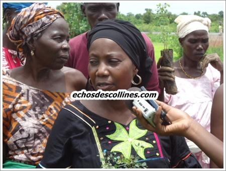 La FAFS de Kédougou répond au slogan«une femme, un arbre»