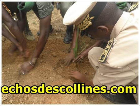 Kédougou: La journée nationale de l'arbre célébrée