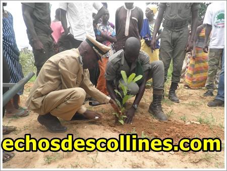 Kédougou: Comment les forêts vont contribuer à la sécurité alimentaire?