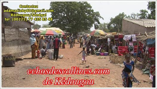 Dindéfélo, le maire Kikala Diallo vulgarise le PUDC à ses conseillers