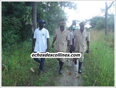 Prévision, les récoltes seront bonnes à Kédougou