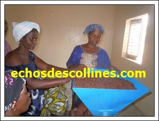 Kédougou: Lancement d'un projet de plus de 100 millions pour soulager les femmes travaillant dans la transformation du Karité