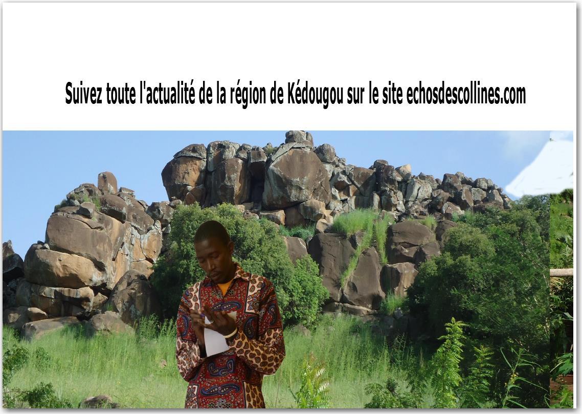 Vidéo   M Ailloud-Perraud Thierry : «  Je ne veux pas détruire l'agriculture de mes frères africains »
