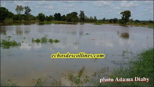 Kédougou: Le fleuve Gambie sort encore de son lit (Photos)
