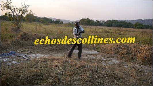 Korka Nicolas Keita, du GIE Gamaré de Bandafassi, plaide pour le retour des jeunes vers l'agriculture mais ….