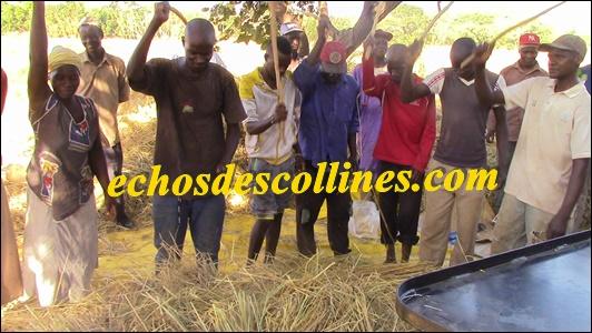Kédougou: Visite du Périmètre Rizicole d'Eganga et mise à la disposition d'une moissonneuse batteuse par le PRODAC.
