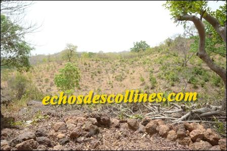 Kédougou: La fondation ZENAGA s'informe sur la commune d'Ethiolo
