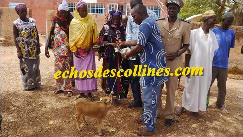 Kédougou: Le service de l'Action Sociale apporte des soutiens aux veuves