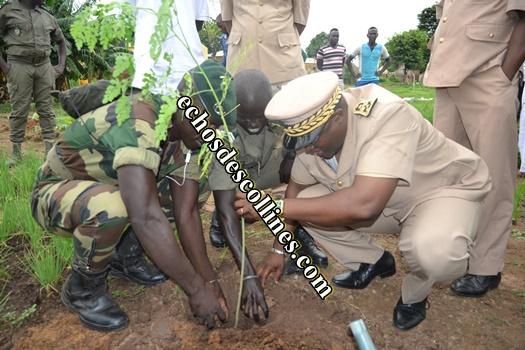 Kédougou: La journée nationale de l'arbre a été célébrée