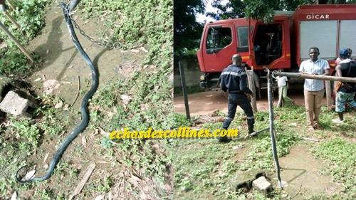 Kédougou: Urgent,un gros serpent tué près du domicile de…