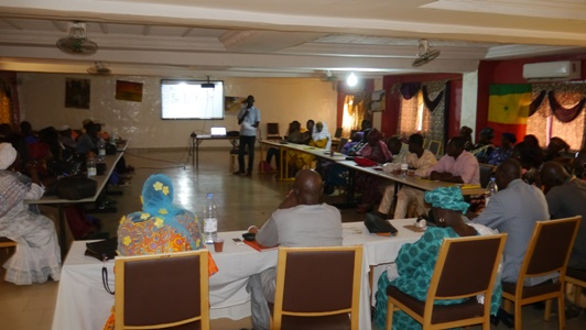 Kédougou: La campagne fonio 2018 est lancée, 300 ha à emblaver