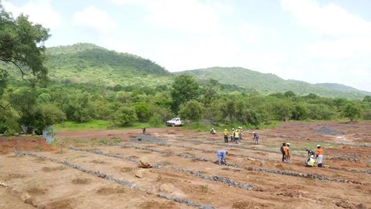 Kédougou: 1520 arbres plantés, PMC réhabilite encore un site de 2 ha