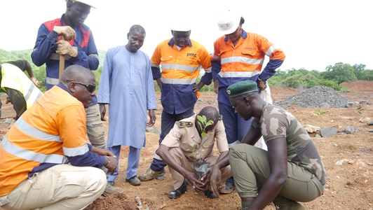 1520 arbres plantés, les actions de PMC sont à encourager