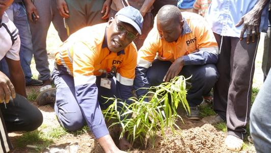 Reboisement, la jeunesse de Tomboronkoto initie, PMC soutient l'action