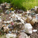 Une catastrophe écologique sans précédent guette Kédougou