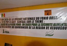 Kédougou : La fête régionale du fonio a été célébrée ce dimanche